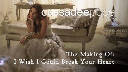 Cassadee Pope - I Wish I Could Break Your Heart
