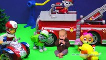 PAW PATROL Nickelodeon Paw Patrol Baby & The Assistant a Paw Patrol Video Parody 2