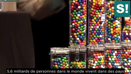 L'immigration et les bonbons - La démonstration qui pousse à la réflexion