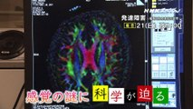 NHKプレマップ「NHKスペシャル 発達障害」