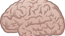Brain Implant Could End Paralysis