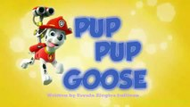 Paw Patrol English Pup Pup Goose Pup Pup and Away part 1 brief E