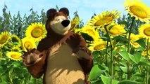 Masha E O Urso Little Cousin E15 Video Dailymotion