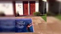 regardez comment cette meuf sexy sort de la piscine avec classe