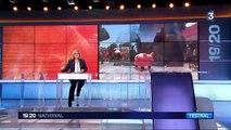 """Festival de Cannes : """"Okja"""" et """"Visages, villages"""", les deux coups de cœur du jour"""