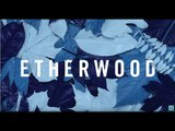 Etherwood - We're Nothing Without Love (feat. S.P.Y)