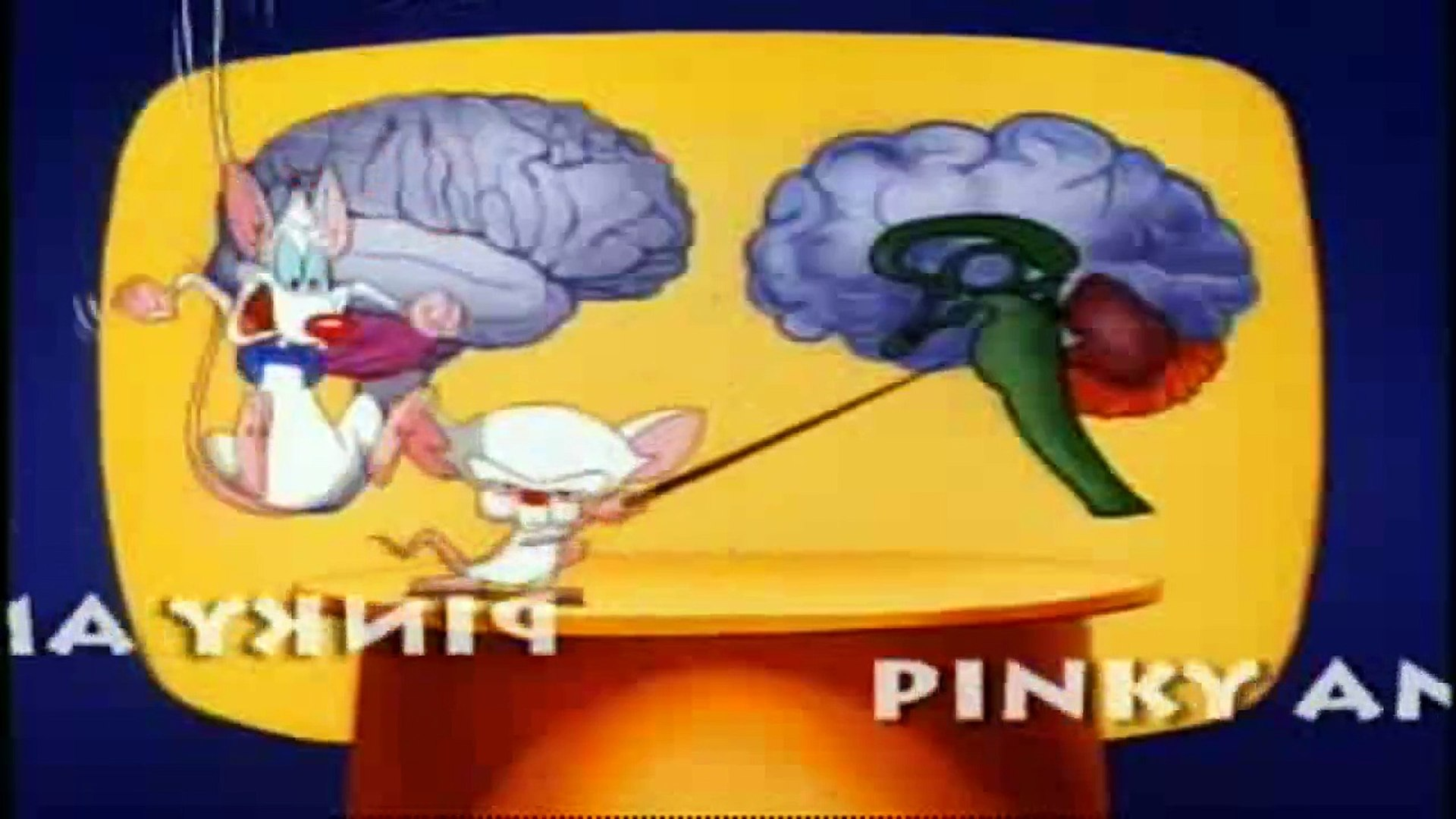 Pinky And The Brain - S 1 E 18 & E 19 - The Third Mouse, The Visit
