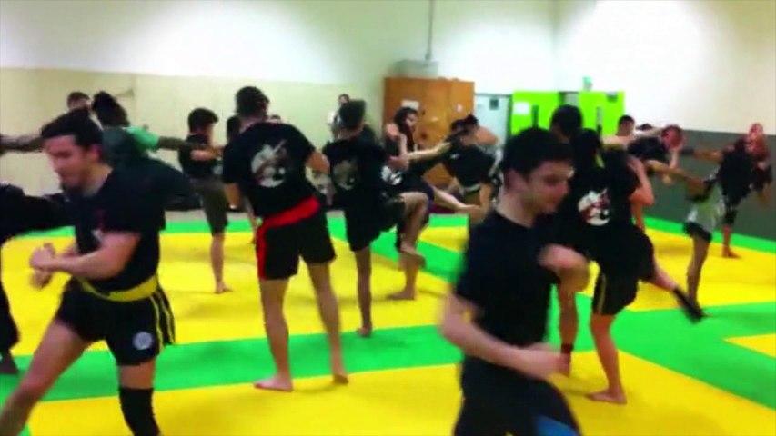 Le Tiger Boxing Club fête ses 10 ans