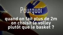 Volley - TQCM - Bleus : Les pourquoi du volley-ball