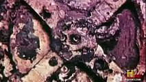 Ancient Aliens Se1 E0 Chariots, Gods and Beyond Part 2