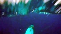 00:32 Dragon Ball Super 071 VOSTFR (Preview) Dragon Ball Super 071 VOSTFR (Preview) theo Masterwebb 12.751 lượt xem Luyện nói tiếng Anh online với GV bản ngữ cho người bận rộn TOPICA NATIVE   by Taboola Sponsored Links  00:32 Dragon Ball Super Epidode