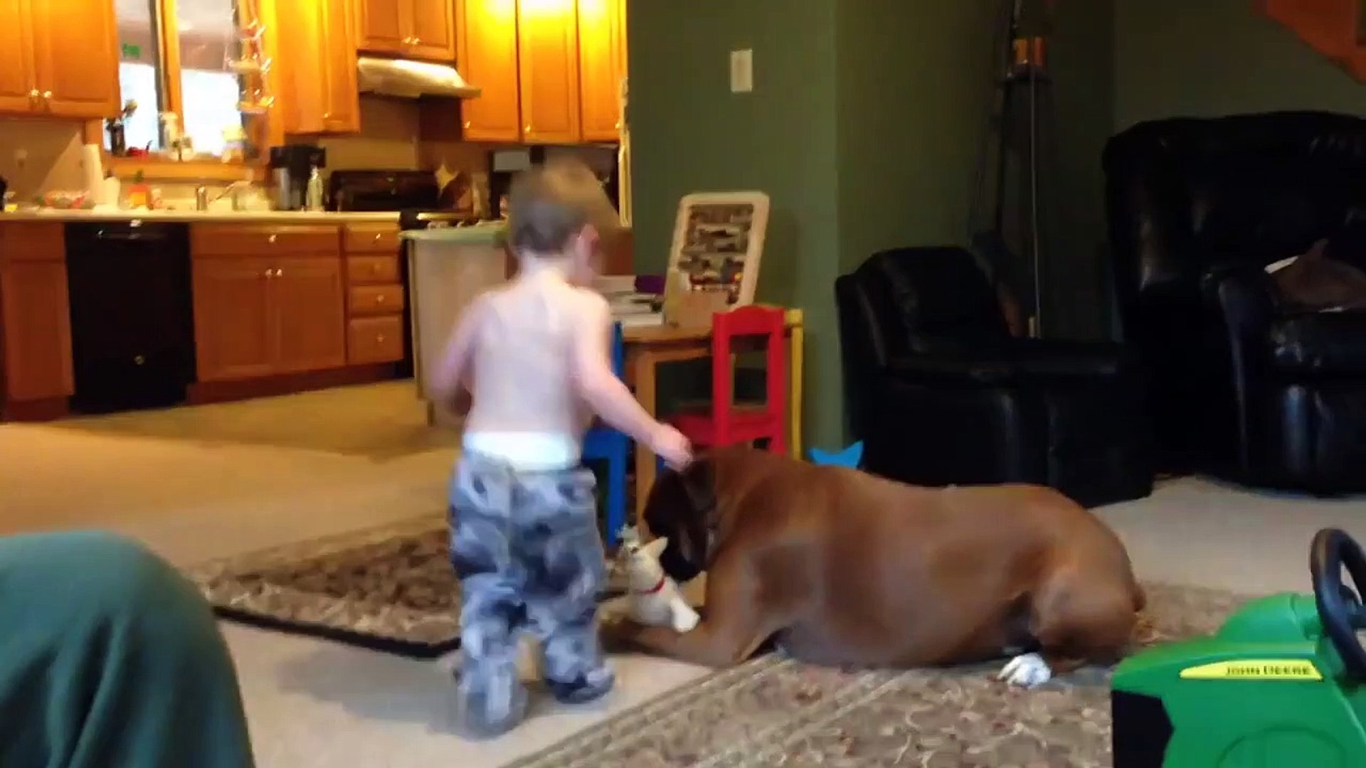 Funniest Cute Kids opers Caught On