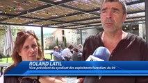 Alpes du Sud : les exploitants forestiers manifestent et interrompent la vente de bois de l'ONF