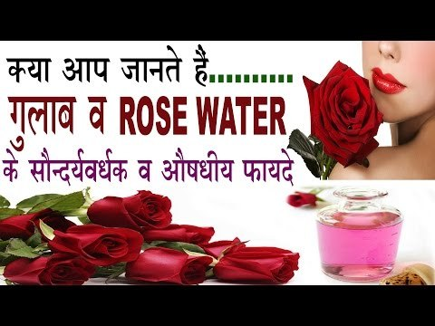 गुलाब व Rose Water के 15 सौन्दर्यवर्धक व औषधीय फायदे | Benefits Of Rose Water (Gulab) In Hindi