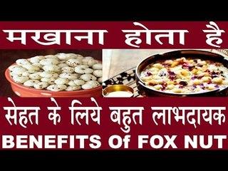 मखाने होते हैं जितने स्वादिष्ट उससे ज्यादा हैं गुणकारी  Health Benefits Of Fox Nut In hindi