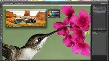 Curso de Photoshop CC #26 REPLACE COLOR - Mude uma cor rapidamente (Substituição de Cor)
