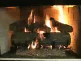 Peterson Charred Oak Vented Gas Logs Video