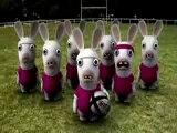 Haka lapins crétins vaut mieux qu'Haka All Blacks VS XV