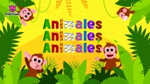 Animales, Animales _ Animales _ PINKFONG