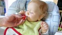 Étienne découvre les fraises