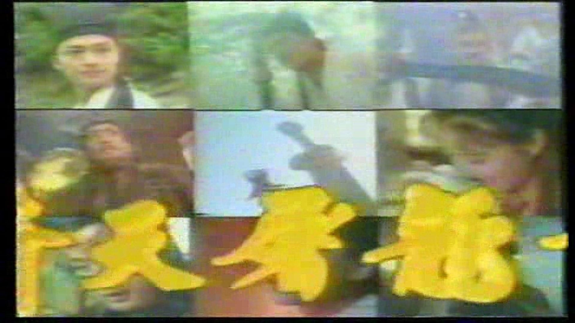 กระบี่ฟ้า ดาบมังกร 1994 (เตียบ่อกี้)The Heaven