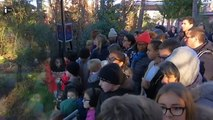 Les animaux fêtent Noël au Zoo de Vincennes-QIpySVS9hhE