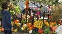VLOG - FRISSONS & SENSATIONS à Nigloland pour Nigloween - Manèges et Attractions Halloween