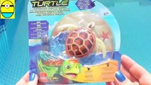 Toys review toys unboxing. Robo turtle. sdsfesTurtle robot rofofish unboxing toys egg surprise tv