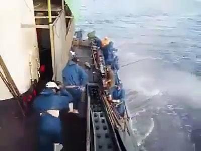 Fish catcher..m