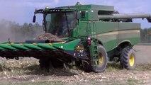 Murray Farms Corn Harvest new Part 2