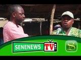SeneNews TV : Marché Bignona de Grand-Yoff : le marché de la viande de porc à polémique… Eclairages