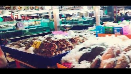 Halal Food In Thailand  - Vlog - Karachi Vynz Official