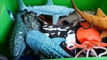 Shark Toys Kids Toy Box Sea Animals Tdsaoy Whales sea turtles caretta