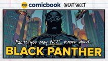 Facts About Black Panther - ComicBook Cheat Sheet