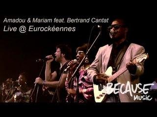Amadou & Mariam feat. Bertrand Cantat -- Africa mon Afrique -- Live @ Eurockéennes