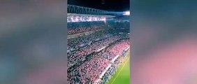 """Gritos de la afición en de la Aficion del Real Madrid en Cardiff """"Piqué, c... saluda al campeón"""