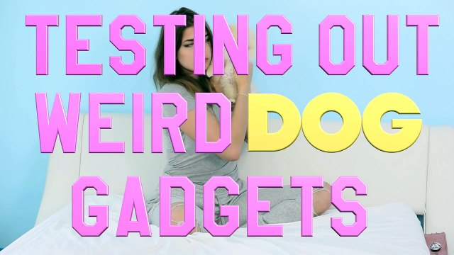 Testing Out Weird Dog Gadgets With NEW PUPPY!-EJZwMy