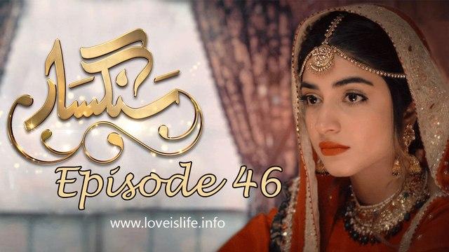 Sangsar Episode 46 HUM TV Drama 5 June 2017