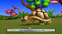 Tortoise | 3D animated nursery rhymes for kids with lyrics | popular animals rhyme for kids | tortoise song | Animal songs | Funny rhymes for kids | cartoon | 3D animation | Top rhymes of animals for children