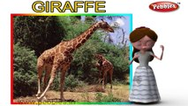 Giraffe | 3D animated nursery rhymes for kids with lyrics | popular animals rhyme for kids | Giraffe song | Animal songs | Funny rhymes for kids | cartoon | 3D animation | Top rhymes of animals for children