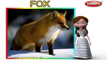 Fox | 3D animated nursery rhymes for kids with lyrics | popular animals rhyme for kids | Fox song | Animal songs | Funny rhymes for kids | cartoon | 3D animation | Top rhymes of animals for children