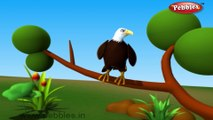 Eagle | 3D animated nursery rhymes for kids with lyrics | popular Birds rhyme for kids | Eagle song | bird songs | Funny rhymes for kids | cartoon | 3D animation | Top rhymes of bird for children