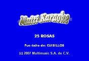 25 Rosas - Banda Cuisillos (Karaoke)