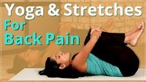 YOGA for BACK PAIN   STRETCHES for Back Pain   EASY YOGA WORKOUT   Beginners Back Pain