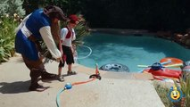 Poitrine amusement amusement chasse vie ouverture planète réal requin jouet jouets Trésor Pirate w surprise animal
