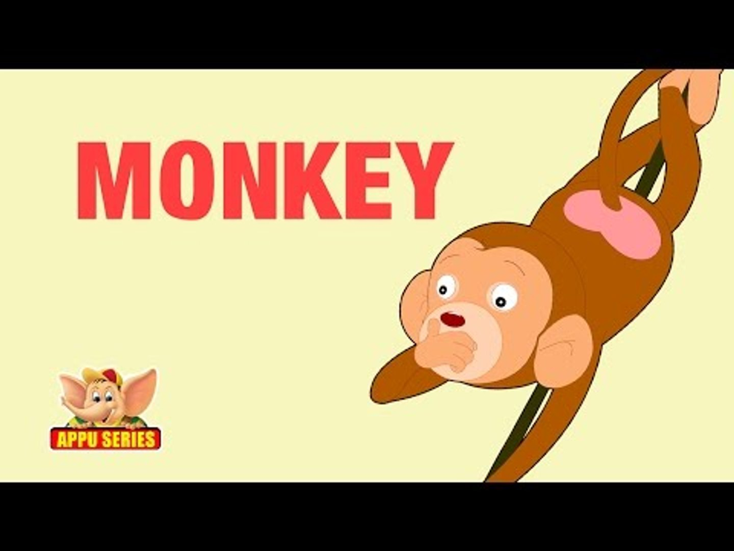 Animal Facts - Monkey