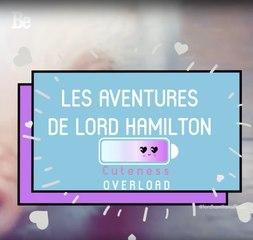 Cuteness Overload : Lord Hamilton le cochon ; )