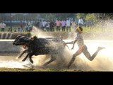 Watch video Kambala Training in Udupi,Karnataka