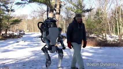 Questo robot ha delle capacità impressionanti: lo capirete quando starà per cadere!