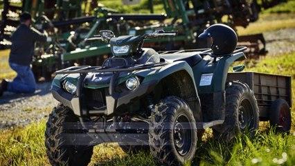 Introducing the 2018 Kodiak 450 4x4 ATV